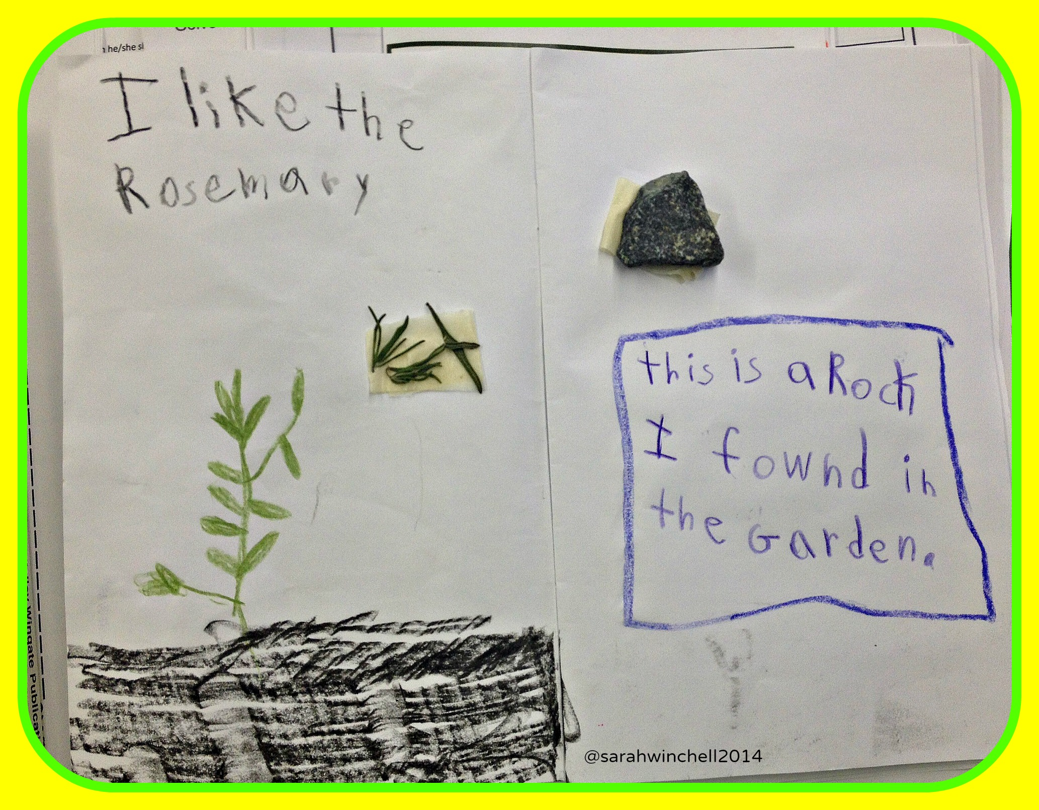 Easy Creative Idea For Learning About Plants Science Is For Kids